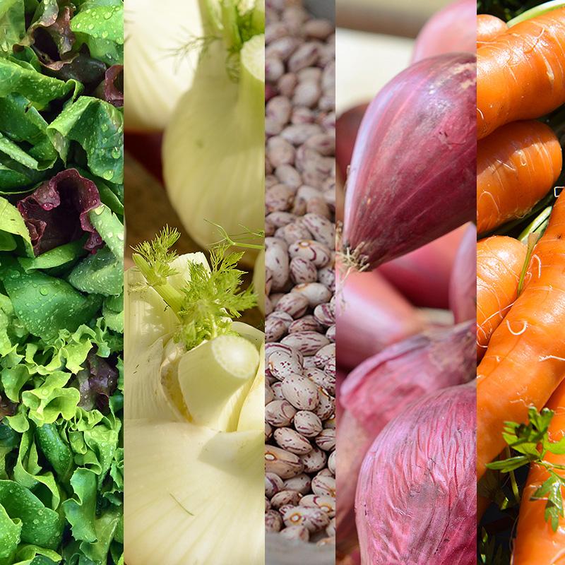 saa_thema_groenten